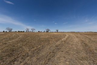 Photo 3: 138 ave 100 Street SE in Calgary: Shepard Industrial Residential Land for sale : MLS®# A1099755