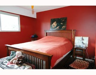 Photo 8: 22870 123RD Ave in Maple Ridge: East Central House for sale : MLS®# V633436