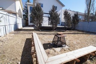 Photo 33: 117 Coverdale Road NE in Calgary: Coventry Hills Detached for sale : MLS®# A1075878