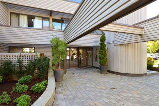 "Photo 20: 201 15313 19 Avenue in Surrey: King George Corridor Condo for sale in ""VILLAGE TERRACE"" (South Surrey White Rock)  : MLS®# R2309674"