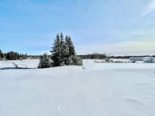 Photo 31: 13 Dane Drive in Carberry: R36 Residential for sale (R36 - Beautiful Plains)  : MLS®# 202105227