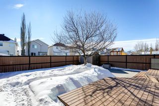 Photo 37: 134 Coverton Heights NE in Calgary: Coventry Hills Detached for sale : MLS®# A1071976