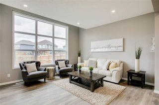 Photo 14: 393 MASTERS Avenue SE in Calgary: Mahogany Detached for sale : MLS®# C4302572