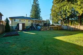 Photo 19: 6509 NAPIER Street in Burnaby: Sperling-Duthie House for sale (Burnaby North)  : MLS®# R2351665
