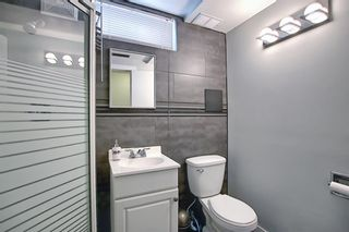 Photo 34: 1027 Penrith Crescent SE in Calgary: Penbrooke Meadows Detached for sale : MLS®# A1104837