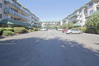"Photo 3: 322 2962 TRETHEWEY Street in Abbotsford: Abbotsford West Condo for sale in ""CASCADE GREEN"" : MLS®# R2157858"