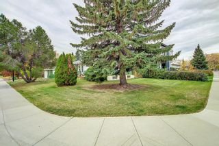 Photo 28: 8304 148 Street in Edmonton: Zone 10 House for sale : MLS®# E4265005