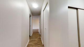 Photo 11: 212 2624 MILL WOODS Road E in Edmonton: Zone 29 Condo for sale : MLS®# E4263901