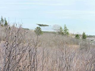 Photo 8: Gilbert Road in Parrsboro: 102S-South Of Hwy 104, Parrsboro and area Vacant Land for sale (Northern Region)  : MLS®# 202107607