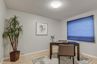 Photo 25: 143 Parkland Green SE in Calgary: Parkland Detached for sale : MLS®# A1140118
