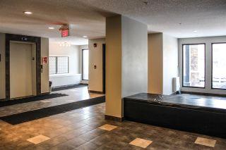 Photo 10: 306 3353 16A Avenue in Edmonton: Zone 30 Condo for sale : MLS®# E4230704