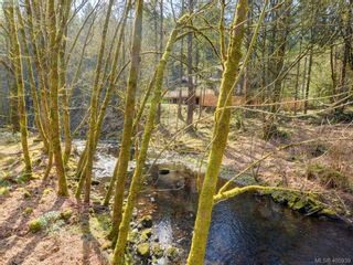Photo 14: 1062 River Rd in VICTORIA: Hi Bear Mountain House for sale (Highlands)  : MLS®# 806632
