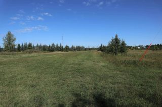 Photo 7: Hwy 622 RR 15: Rural Leduc County Rural Land/Vacant Lot for sale : MLS®# E4261453