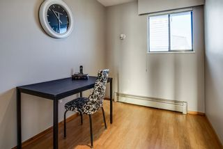 Photo 20: 254 WARRICK Street in Coquitlam: Cape Horn House for sale : MLS®# R2479071
