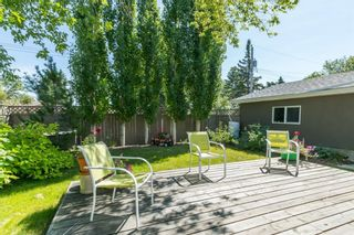 Photo 26: 16 WALNUT Drive SW in Calgary: Wildwood Detached for sale : MLS®# A1022816