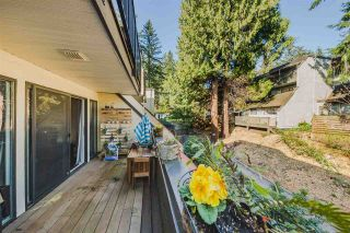 """Photo 1: 40 1825 PURCELL Way in North Vancouver: Lynnmour Condo for sale in """"Lynnmour South"""" : MLS®# R2584935"""