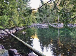 Photo 4: Lot 62 Busby Island in : Isl Small Islands (Campbell River Area) Land for sale (Islands)  : MLS®# 877382