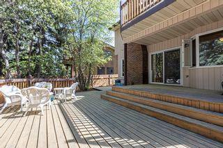 Photo 49: 6 WINDERMERE Crescent: St. Albert House for sale : MLS®# E4248081