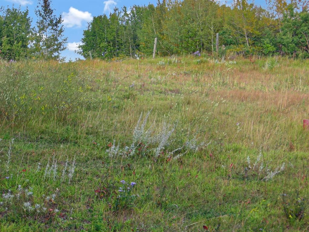 Main Photo: 24180 Meadow Drive in Rural Rocky View County: Rural Rocky View MD Residential Land for sale : MLS®# A1098296