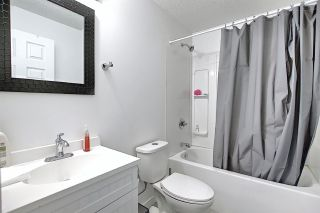 Photo 14: 2020 152 Avenue in Edmonton: Zone 35 House for sale : MLS®# E4239564