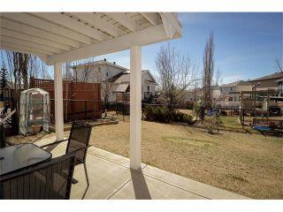 Photo 39: 140 TUSCARORA Circle NW in Calgary: Tuscany House for sale : MLS®# C4058828