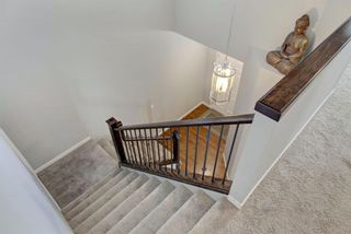 Photo 18: 40 BRIGHTONCREST Manor SE in Calgary: New Brighton Detached for sale : MLS®# A1016747