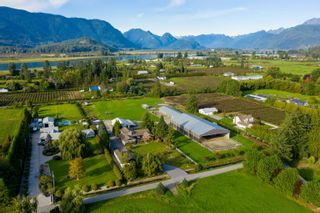 Photo 3: 18949 MCQUARRIE Road in Pitt Meadows: North Meadows PI House for sale : MLS®# R2620958