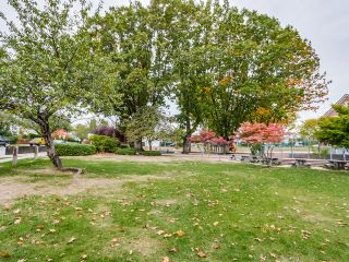 Photo 21: 8539 Cartier Street in Vancouver: Marpole Home for sale ()  : MLS®# R2004032