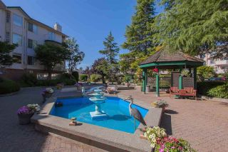 """Photo 16: 116 5360 205 Street in Langley: Langley City Condo for sale in """"Parkway Estates"""" : MLS®# R2491402"""