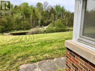 Photo 7: 2399 7TH LINE in Innisfil: Agriculture for sale : MLS®# N5280750