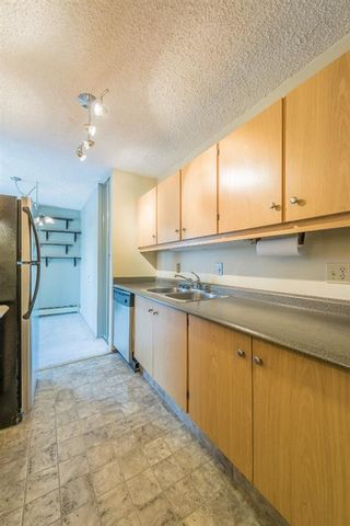 Photo 10: 302 1222 Kensington Close NW in Calgary: Hillhurst Apartment for sale : MLS®# A1056471