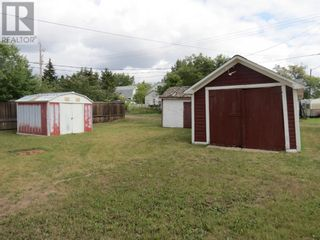Photo 13: 4903 51 Street in Lougheed: House for sale : MLS®# A1144670