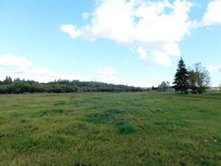 Photo 4: Rge Rd 231 North of Twp Rd 564: Rural Sturgeon County Rural Land/Vacant Lot for sale : MLS®# E4262842