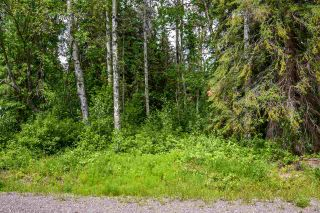 """Photo 4: 3 3000 DAHLIE Road in Smithers: Smithers - Rural Land for sale in """"Mountain Gateway Estates"""" (Smithers And Area (Zone 54))  : MLS®# R2280165"""