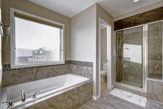 Photo 12: 461 NOLAN HILL Boulevard NW in Calgary: Nolan Hill Detached for sale : MLS®# C4296999