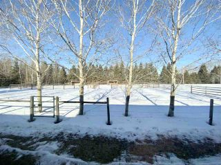 Photo 31: 16 240074 TWP RD 471: Rural Wetaskiwin County House for sale : MLS®# E4229607