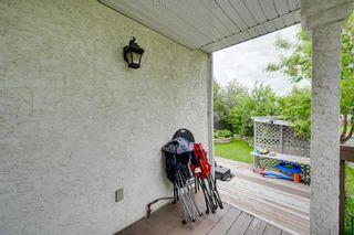 Photo 46: 11833 10A Avenue in Edmonton: Zone 16 House for sale : MLS®# E4249134