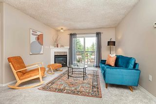 Photo 21: 215 279 SUDER GREENS Drive in Edmonton: Zone 58 Condo for sale : MLS®# E4261429