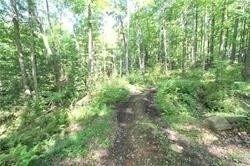 Photo 15: Lt 30 Gelert Road in Minden Hills: House (Bungalow) for sale : MLS®# X4982694