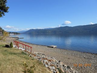 Photo 23: 4976 Squilax Anglemont Road in Celista: North Shuswap House for sale (Shuswap)  : MLS®# 10055186