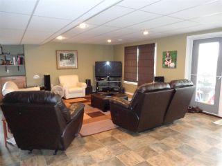 Photo 20: 5014 46 Street: Sedgewick House for sale : MLS®# E4244202