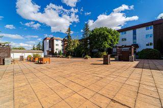 Photo 45: 409 14810 51 Avenue in Edmonton: Zone 14 Condo for sale : MLS®# E4263309