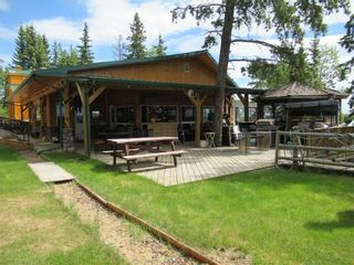 Photo 14: 342042  Range Road 44: Rural Clearwater County Detached for sale : MLS®# C4295944