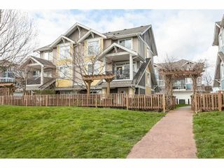 """Photo 20: 15 6036 164 Street in Surrey: Cloverdale BC Townhouse for sale in """"Arbour Village"""" (Cloverdale)  : MLS®# R2445991"""