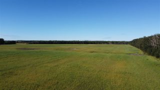 Photo 9: Twp 474 Hwy 795: Rural Wetaskiwin County Rural Land/Vacant Lot for sale : MLS®# E4211589