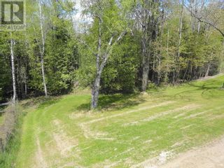 Photo 27: 206 TOBACCO RD in Cramahe: House for sale : MLS®# X5240873