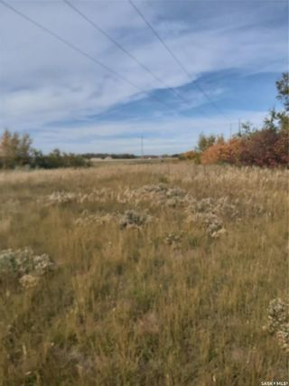 Photo 3: R.M. OF DUNDURN #314 LOT 20 in Dundurn: Lot/Land for sale : MLS®# SK871227