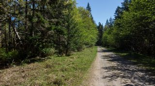 Photo 14: LT4 Eagles Dr in : CV Courtenay North Land for sale (Comox Valley)  : MLS®# 876994
