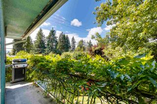 Photo 10: 3510 CLAYTON Street in Port Coquitlam: Woodland Acres PQ House for sale : MLS®# R2597077