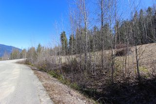Photo 6: Lot 11 Ivy Road: Eagle Bay Vacant Land for sale (South Shuswap)  : MLS®# 10229941